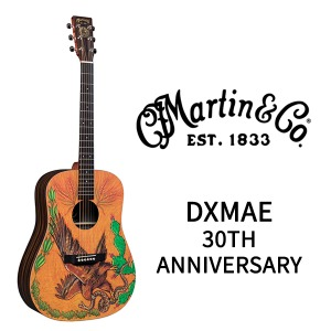 마틴기타 DXMAE 30th Anniversary Guitar / X 시리즈
